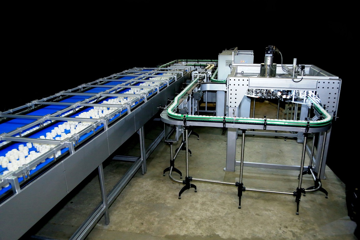 Specialized Conveying Systems